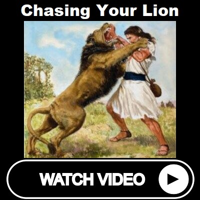 Chasing Your Lion